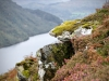 Aira Force & Gowbarrow Fell [28/09/2020]
