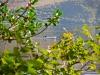 Cat Bells & Derwent Water [29/09/2020]