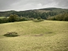 Grizedale Forest [24/09/2020]