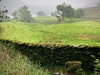 Rydal Water [22/09/2020]