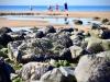 Seascale Beach [25/08/2019]