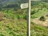 Precipice Walk, Dolgellau